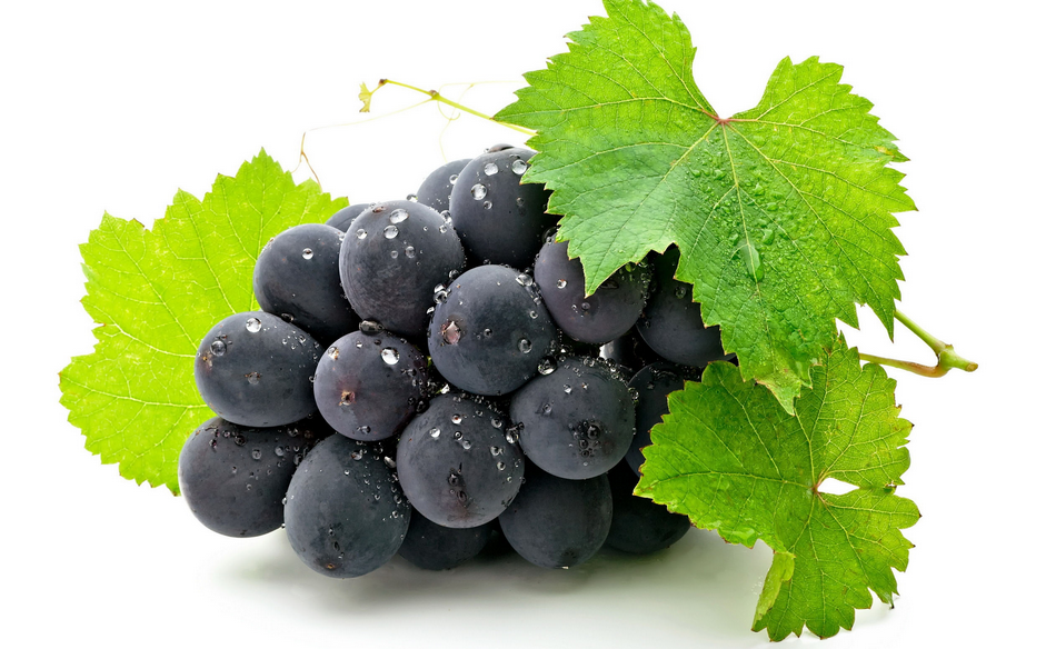 grapeseed.png