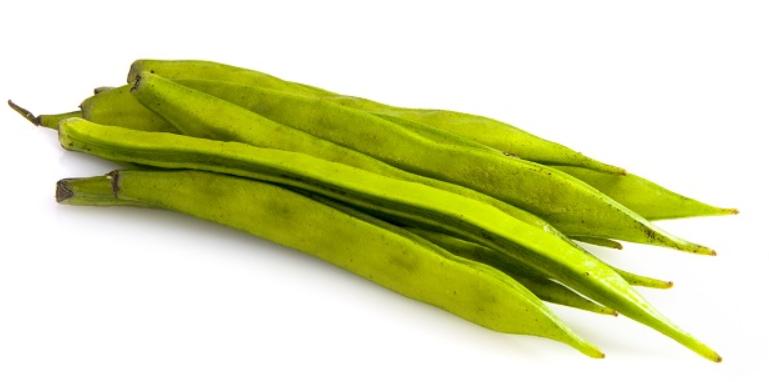guar-plant.png